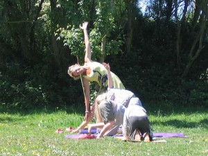 yoga in sunshine